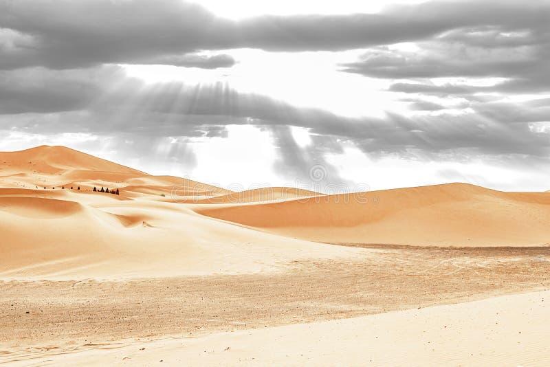 Caravan die door de zandduinen gaan in Sahara Desert royalty-vrije stock afbeeldingen