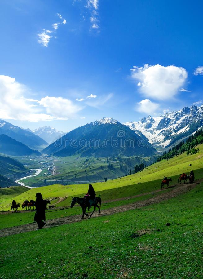 Caravan Local people with Horses on a Hill, Kashmir stock images