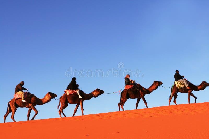 Caravan nel deserto fotografia stock