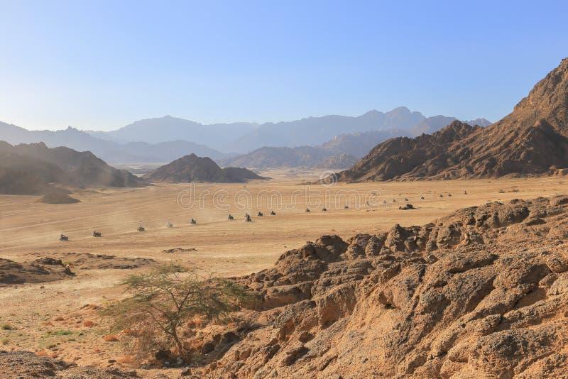 Caravan quad bikes in the desert. In Egypt stock photography