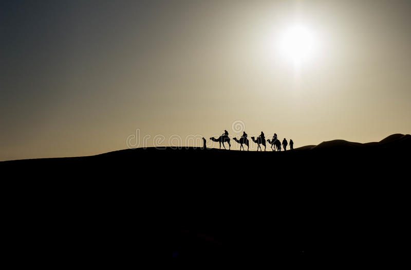 Caravan in the Sahara desert royalty free stock photos
