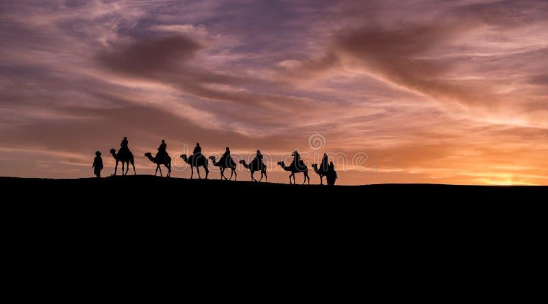 Caravan in Sahara Desert royalty free stock image