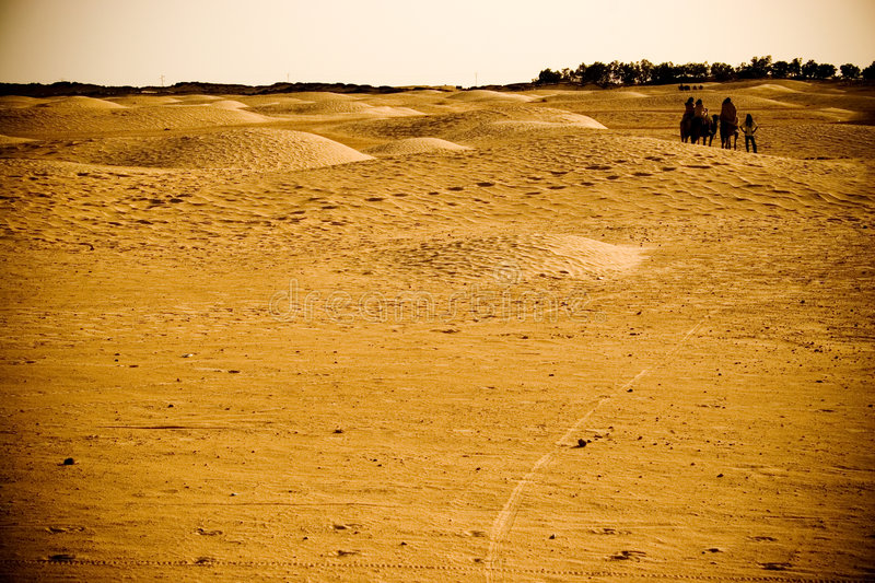 Download Caravan Travelling In The Desert Royalty Free Stock Photos - Image: 3342878