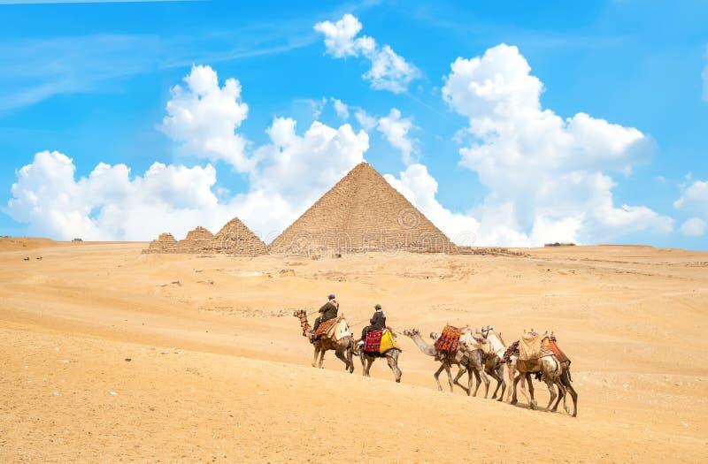 Caravana de camellos imagen de archivo
