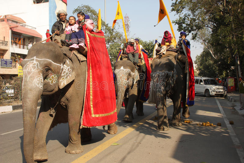 Caravana de elefantes fotos de archivo