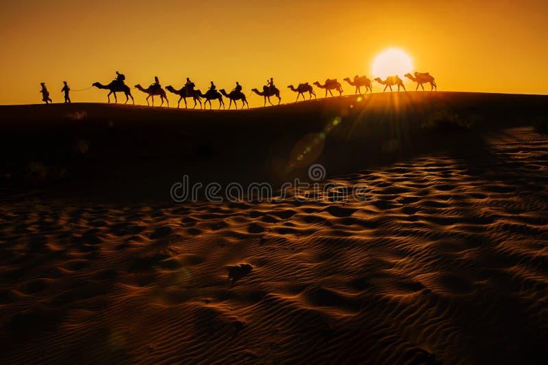 Caravana del camello fotografía de archivo