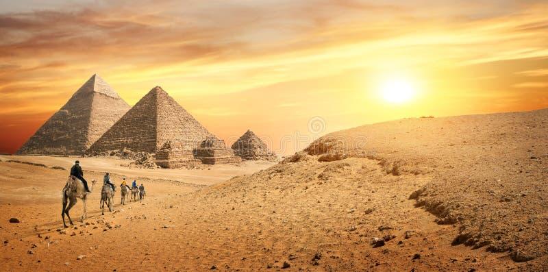 Caravana del camello en desierto foto de archivo