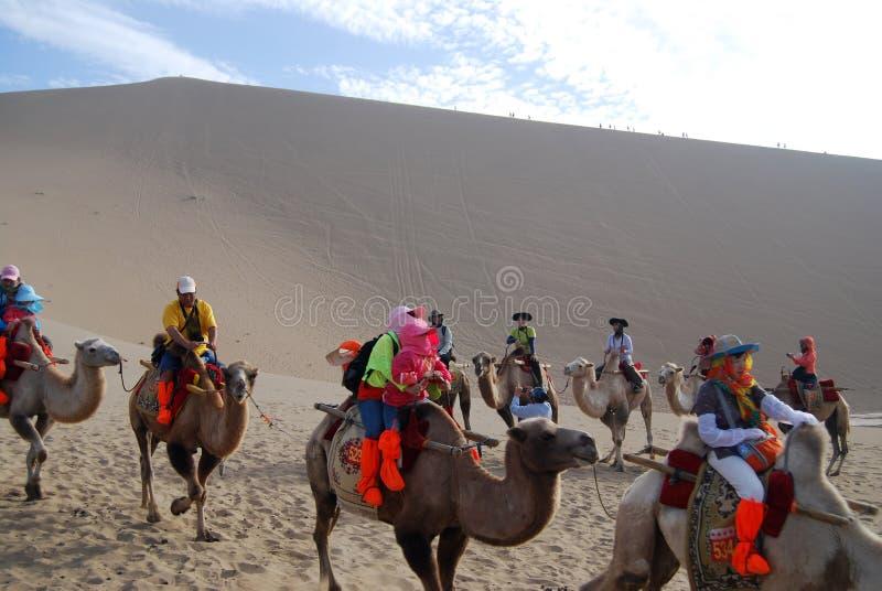 Caravana del camello en el desierto imagenes de archivo