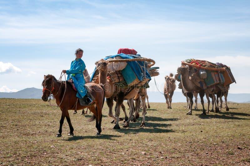 Caravana dos camelos em Mongolia foto de stock