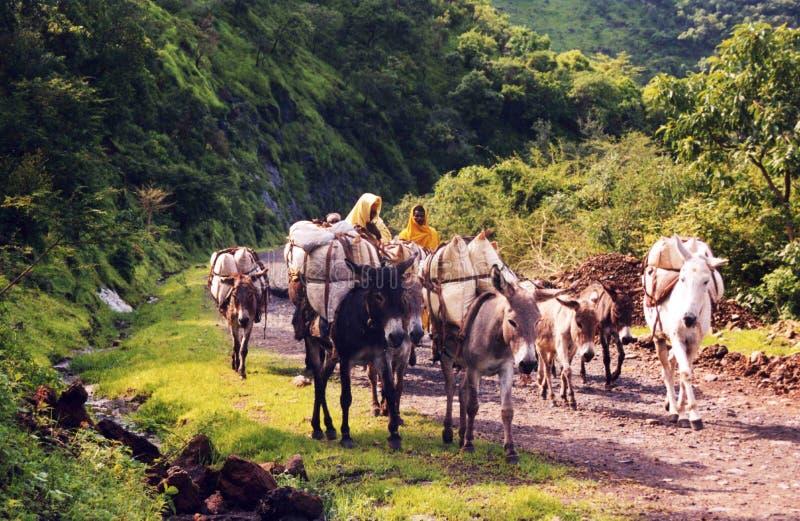 Caravane éthiopienne image libre de droits