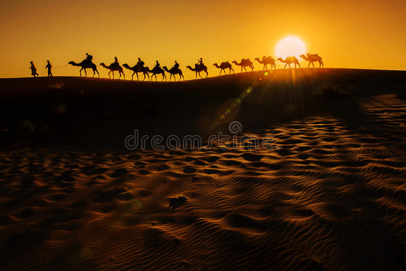 Caravane de chameau