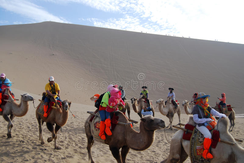 Caravane de chameau dans le désert images stock