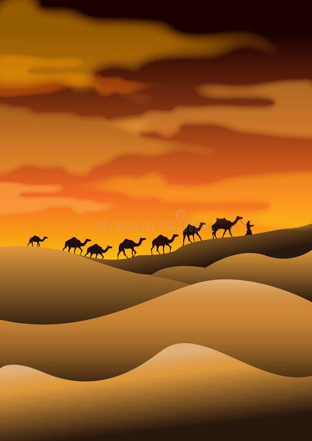 Caravanes de chameau de désert illustration stock