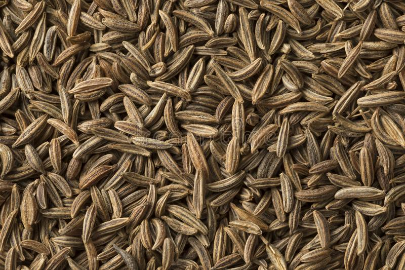Caraway seeds full frame close up. Dried organic Caraway seeds full frame close up stock photos