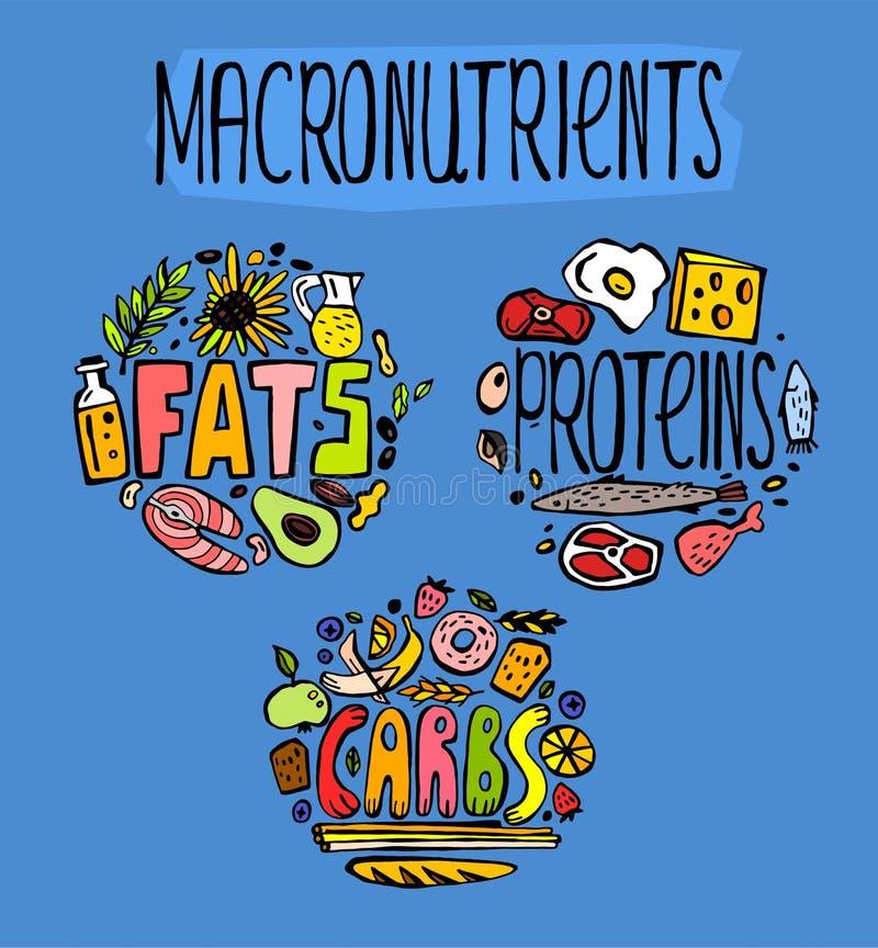 Carbohidratos, grasas y proteínas libre illustration