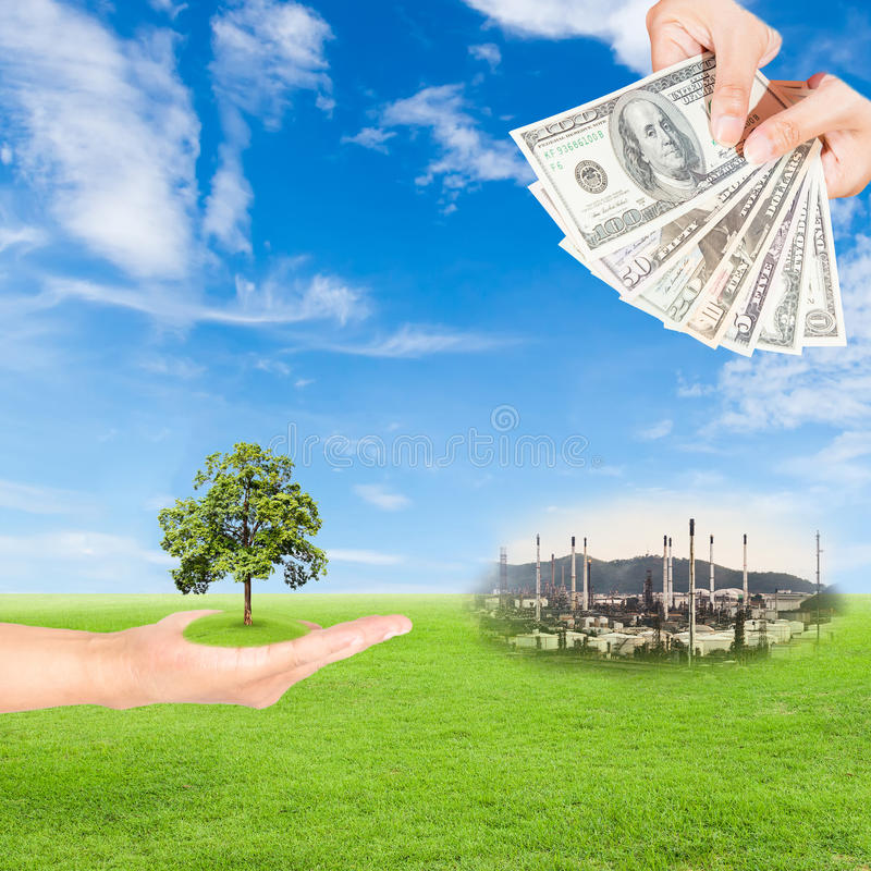 Carbon credits concept. Hand holding tree and US Dollars banknote with oil refinery plant against green field and blue sky background stock photo