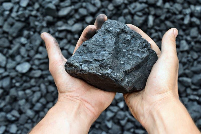Carbone nelle mani del minatore del lavoratore fotografia stock