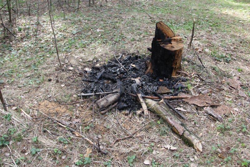 Carbones después del fuego fotografía de archivo