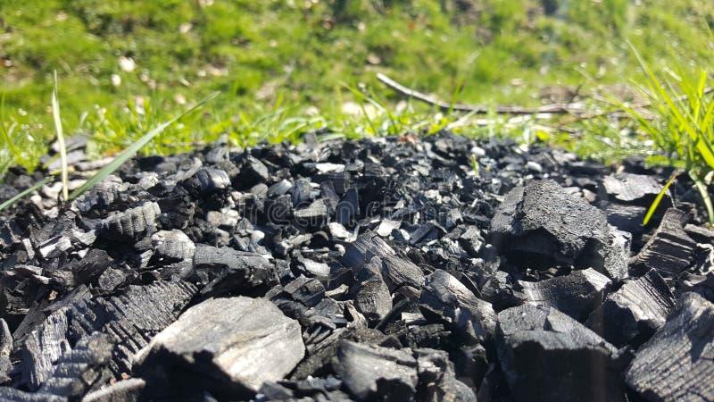 Carbones naturales con la hierba en fondo imagen de archivo libre de regalías