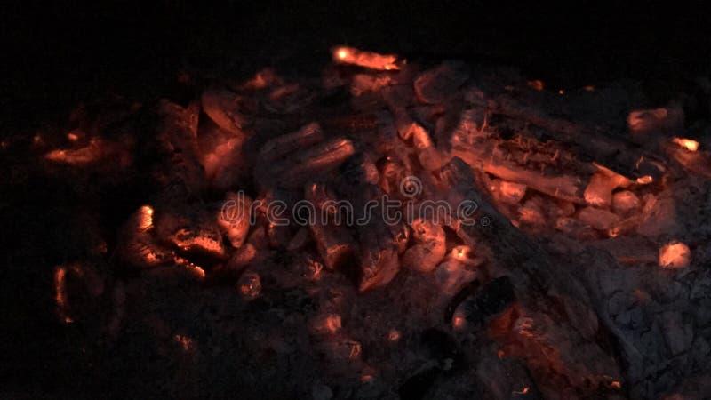 Carboni di decomposizione fotografia stock