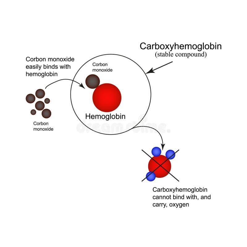 Carboxyhemoglobin jointure de l 39 oxyde de carbone d - Oxyde de carbone ...