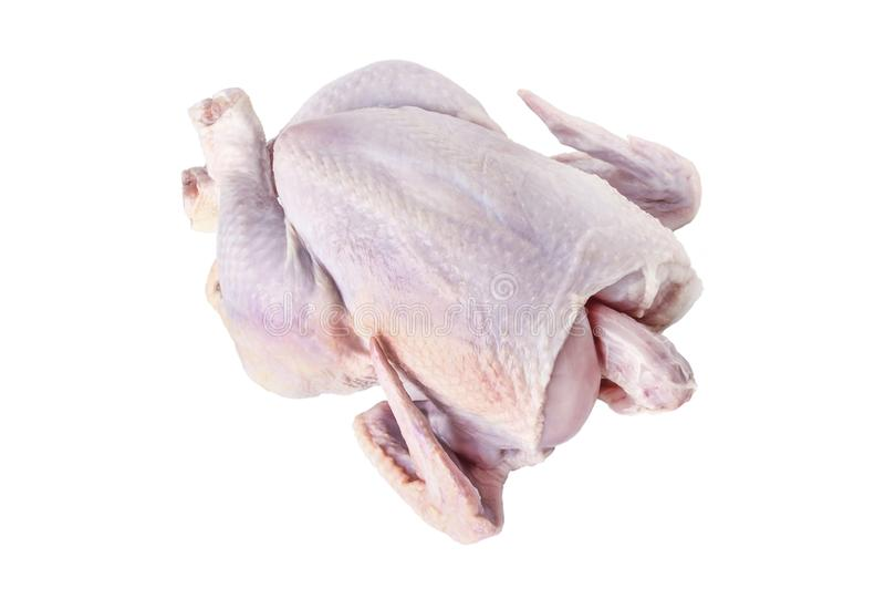Carcaça de frango fotografia de stock
