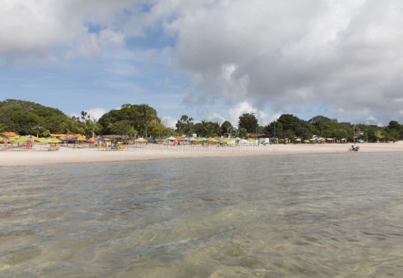 Carcara laguna, Nizia Floresta, RN, Brazylia zdjęcia stock
