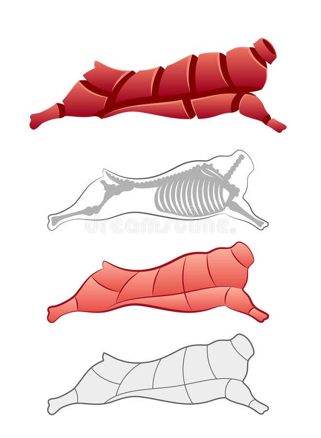 Beef carcass. Carcass and animal skeleton on a white background stock illustration