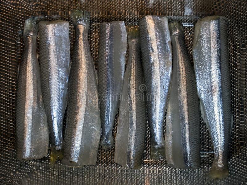Carcasses fraîches de petits poissons, épluchées et préparées pour la cuisson photos stock