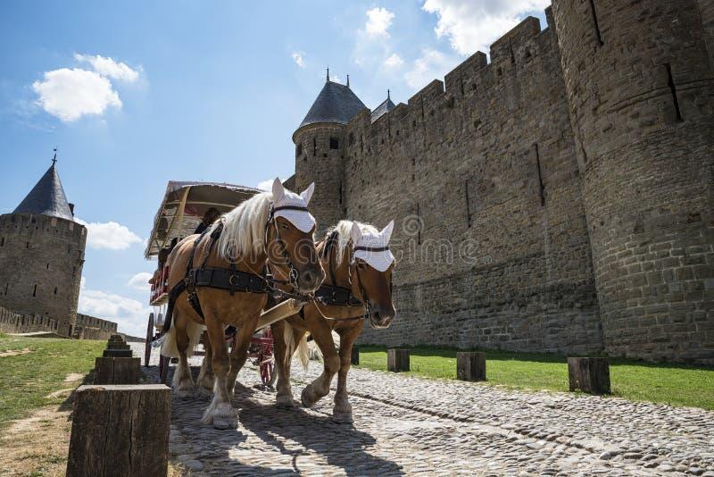 Carcassonne arkivbild