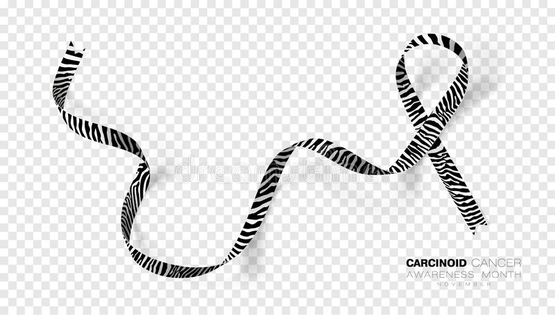 Carcinoid Cancer Awareness Month. Zebra Stripe Color Ribbon Isolated On Transparent Background. Vector Design Template. For Poster. Illustration stock illustration