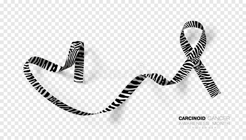 Carcinoid Cancer Awareness Month. Zebra Stripe Color Ribbon Isolated On Transparent Background. Vector Design Template. For Poster. Illustration royalty free illustration