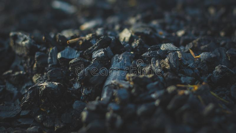 The Carcoal royalty free stock image