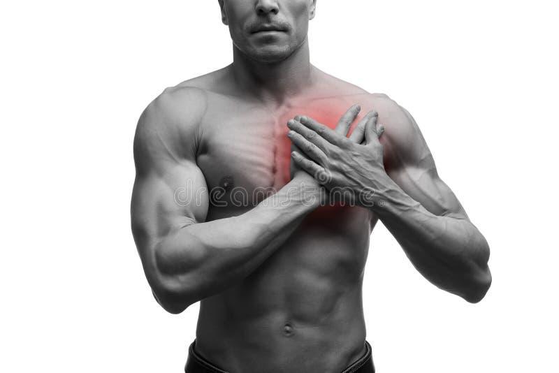 Cardíaco de ataque, homem muscular envelhecido meio com dor no peito isolado no fundo branco fotos de stock