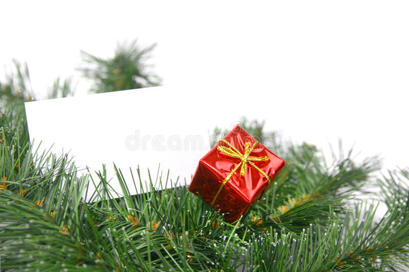 Card in christmas tree. Blank business card with red christmas gift in a tree royalty free stock photography
