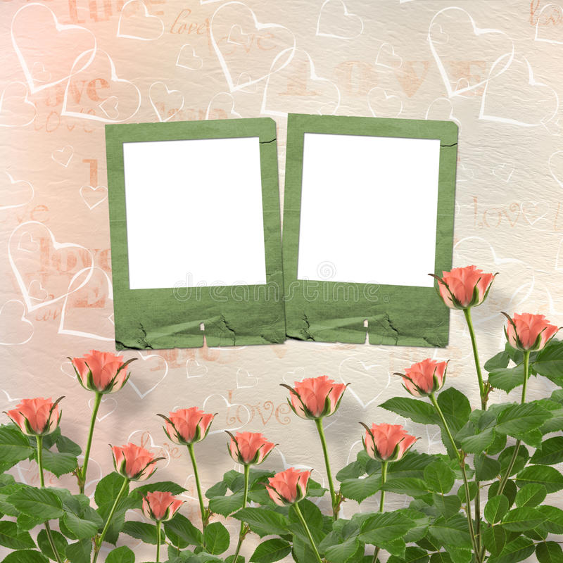 Download Card For Congratulation With Frames And Pink Roses Stock Illustration - Image: 25225198