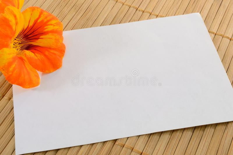 Card and flower. Blank card with orange flower on a bamboo background royalty free stock photo