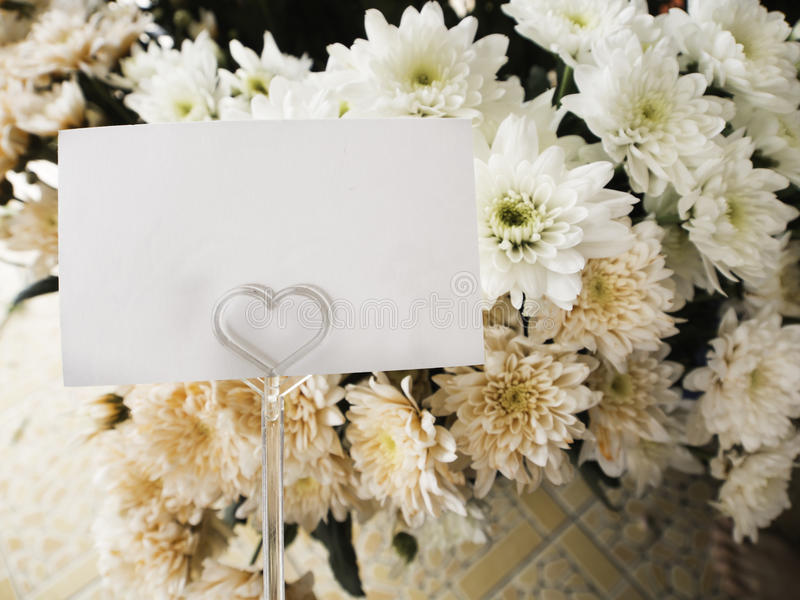Card with flower. Blank white card with flower in flower shop stock images