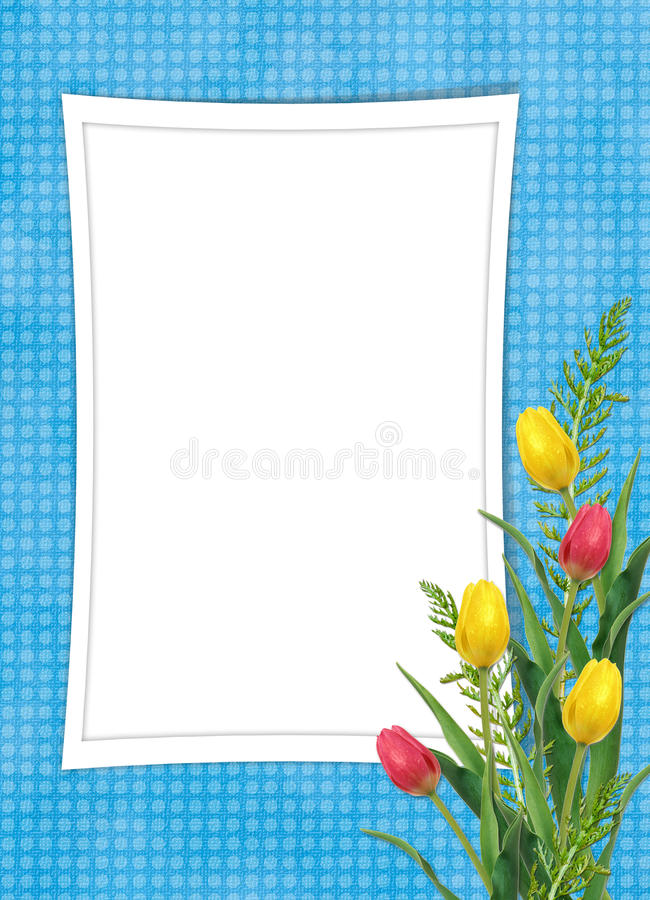 Card for the holiday with flower. On the abstract background stock photography
