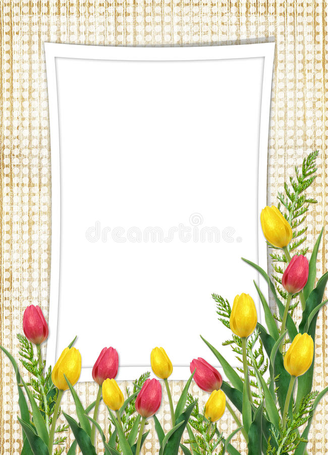 Card for the holiday with flower. On the abstract background royalty free stock photo