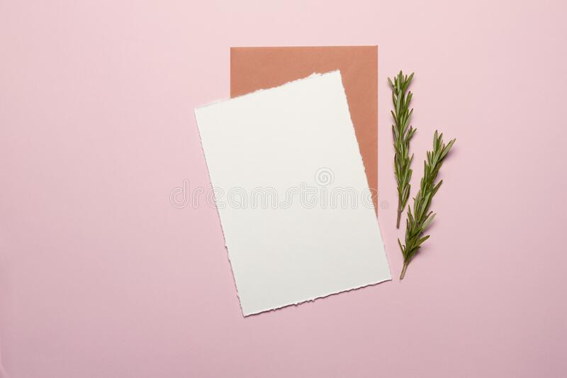 Card made of white paper, envelope, gold elements, sprigs of rosemary on the background - pink paper Mock-up fotografia royalty free