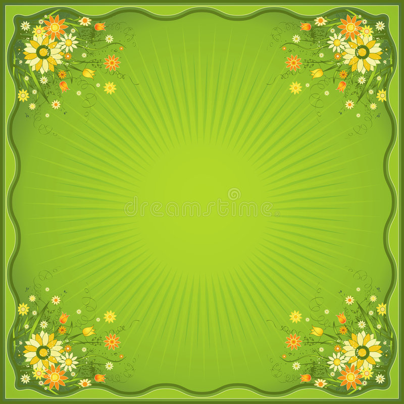 Card with marguerites, vector. Card with many marguerites on the green background, vector illustration vector illustration