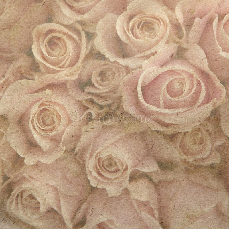 Download Card with pink roses stock image. Image of border, aged - 16880243