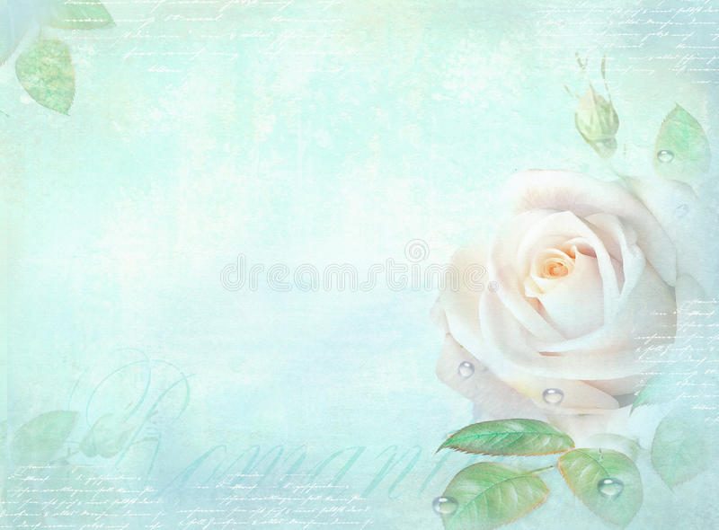 Card with rose flower on a light turquoise background. Template of an invitation, wedding, birthday, anniversary or similar event,. Cover page, flyer, poster royalty free illustration