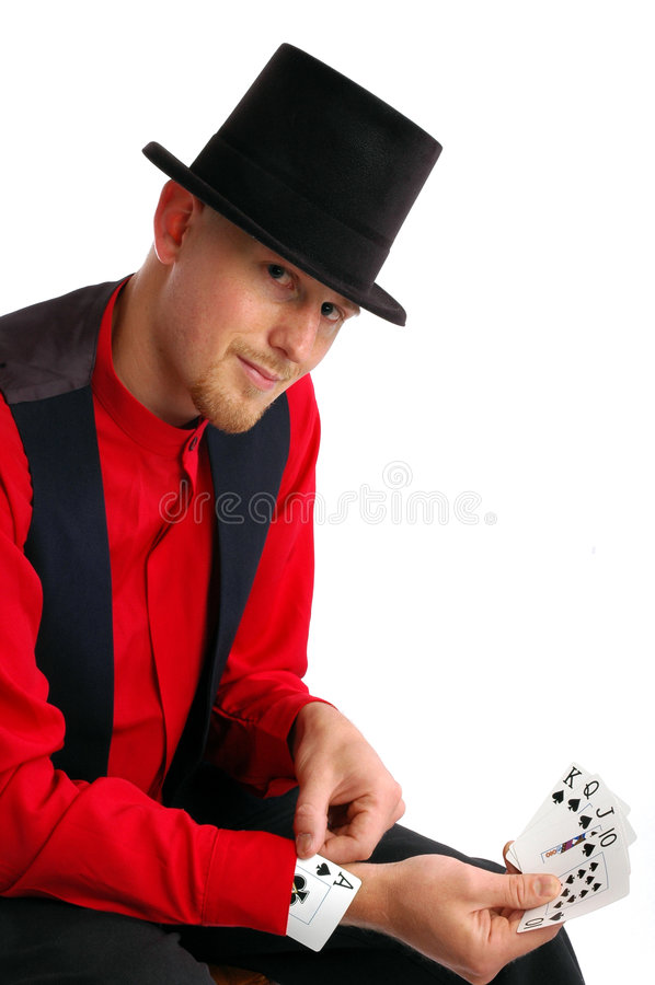 Card Shark royalty free stock images