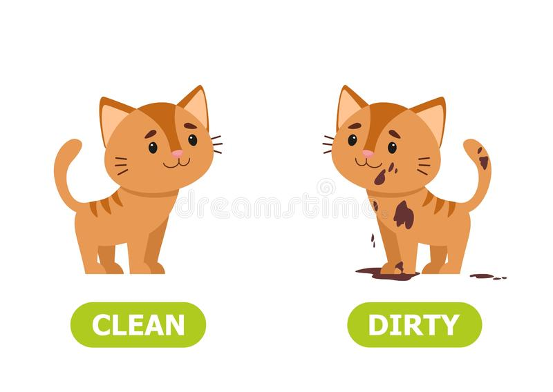 Kitty dirty and clean. Illustration of opposites  dirty and clean. Card for teaching aid, for a foreign language learning. Vector illustration on white royalty free illustration