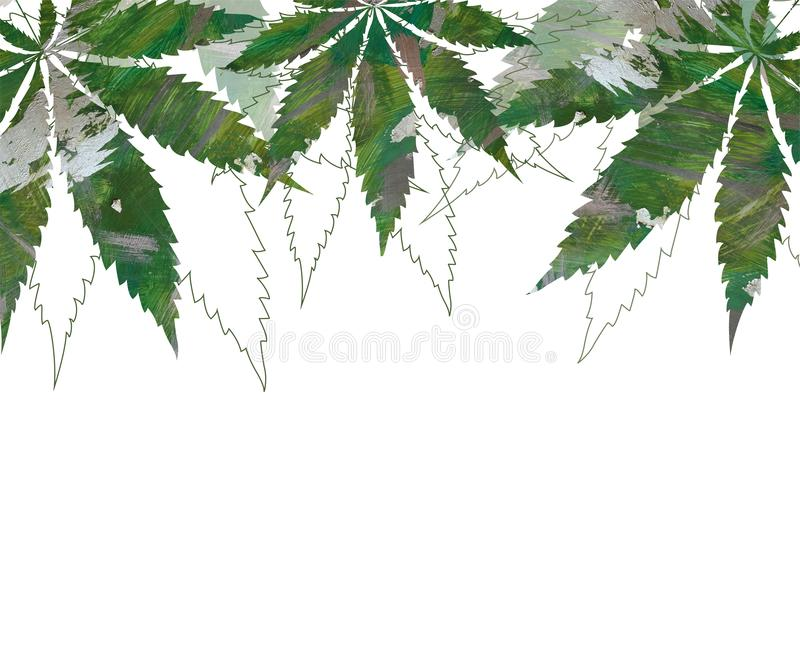 Card, template, banner hand drawing of leaves of hemp cannabis. With acrylic brushstrokes. Color green graphics  illustration stock illustration