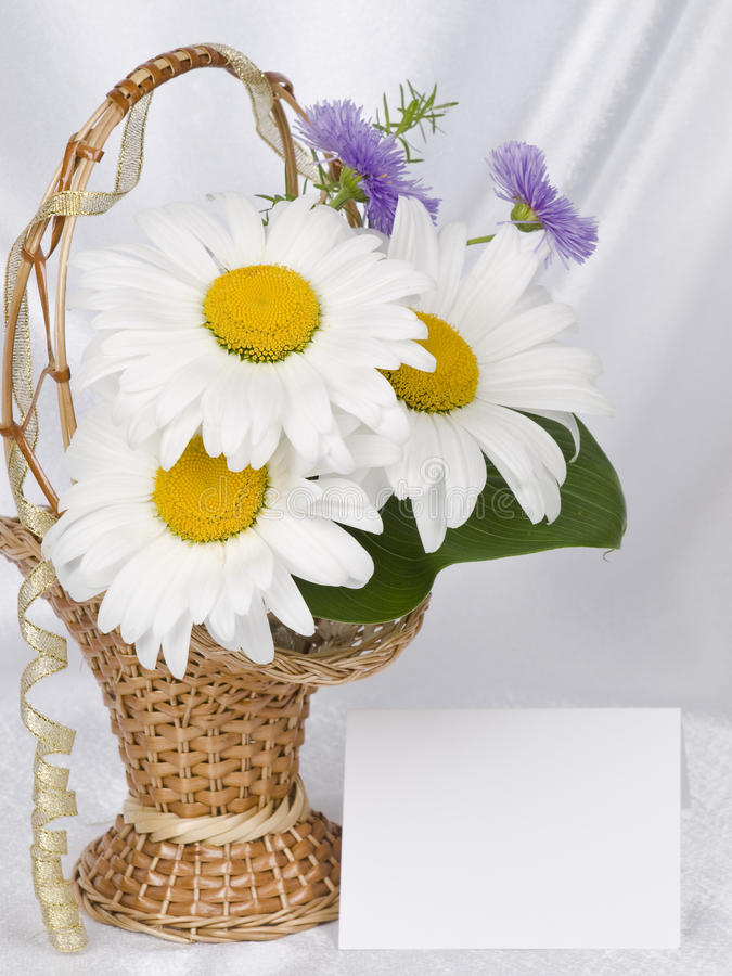Download Card for text and bouquet stock image. Image of basket - 14854277