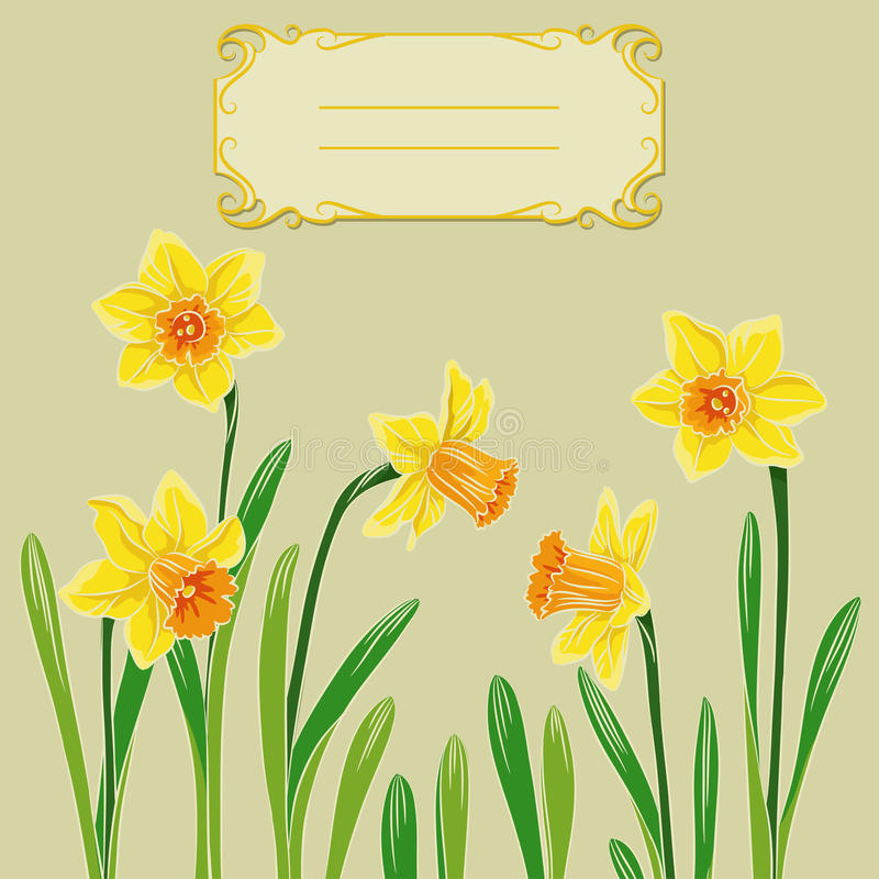 Free Card With Easter Daffodil In Center And Frame Royalty Free Stock Photo - 38820565