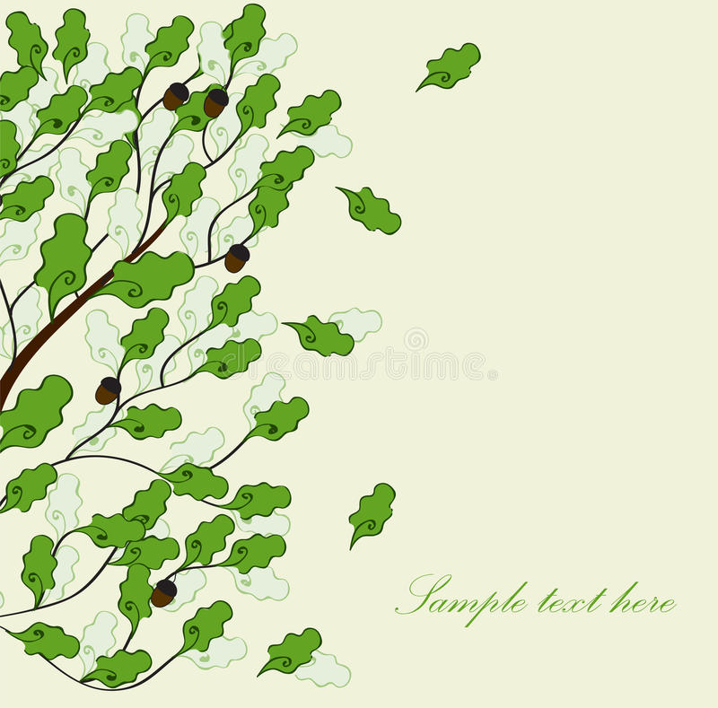 Free Card With Green Oak Stock Images - 16826424